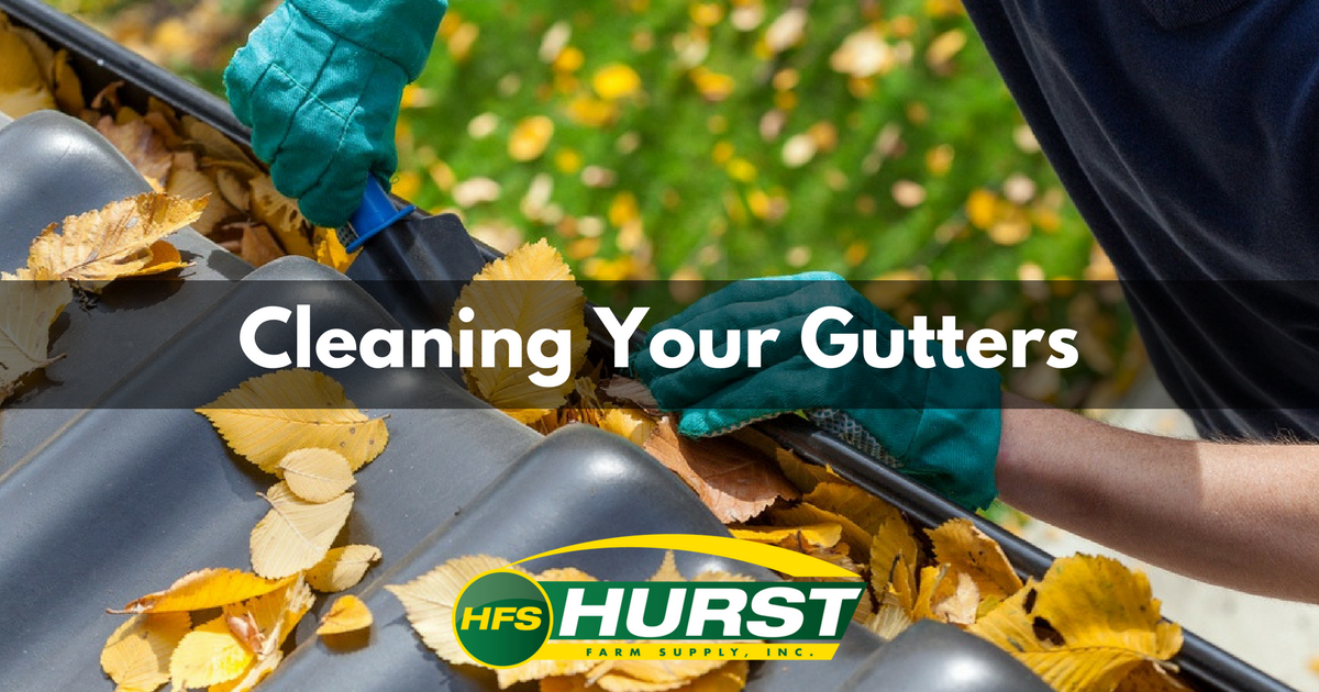 Cleaning Your Gutters.png