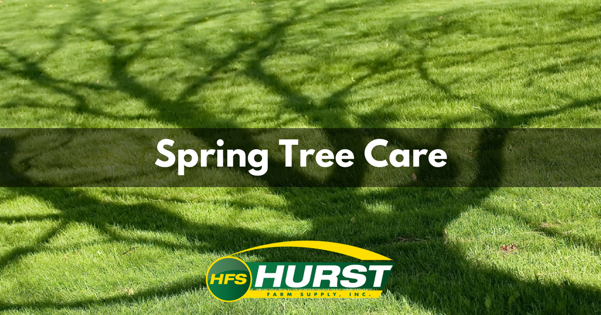 Spring Tree Care.png