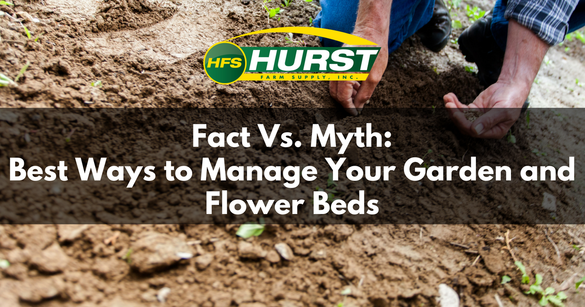Fact Vs Myth: Best Ways to Manage Your Garden and Flower Beds