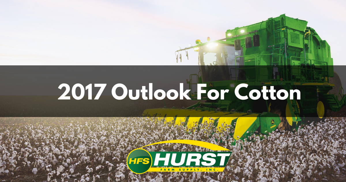 2017 Outlook For Cotton