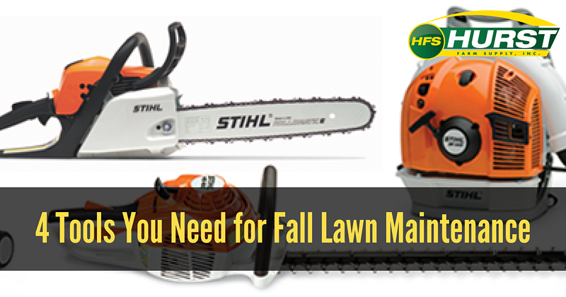 4 Tools You Need for Fall Lawn Maintenance