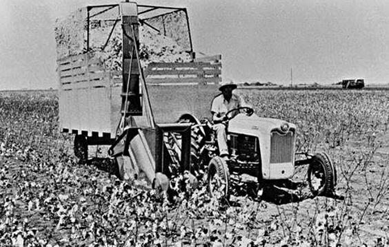 Cotton_Stripper_History_1.jpg