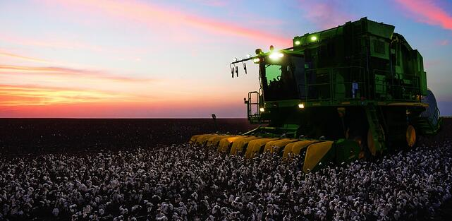 cotton harvest protect your back.jpg