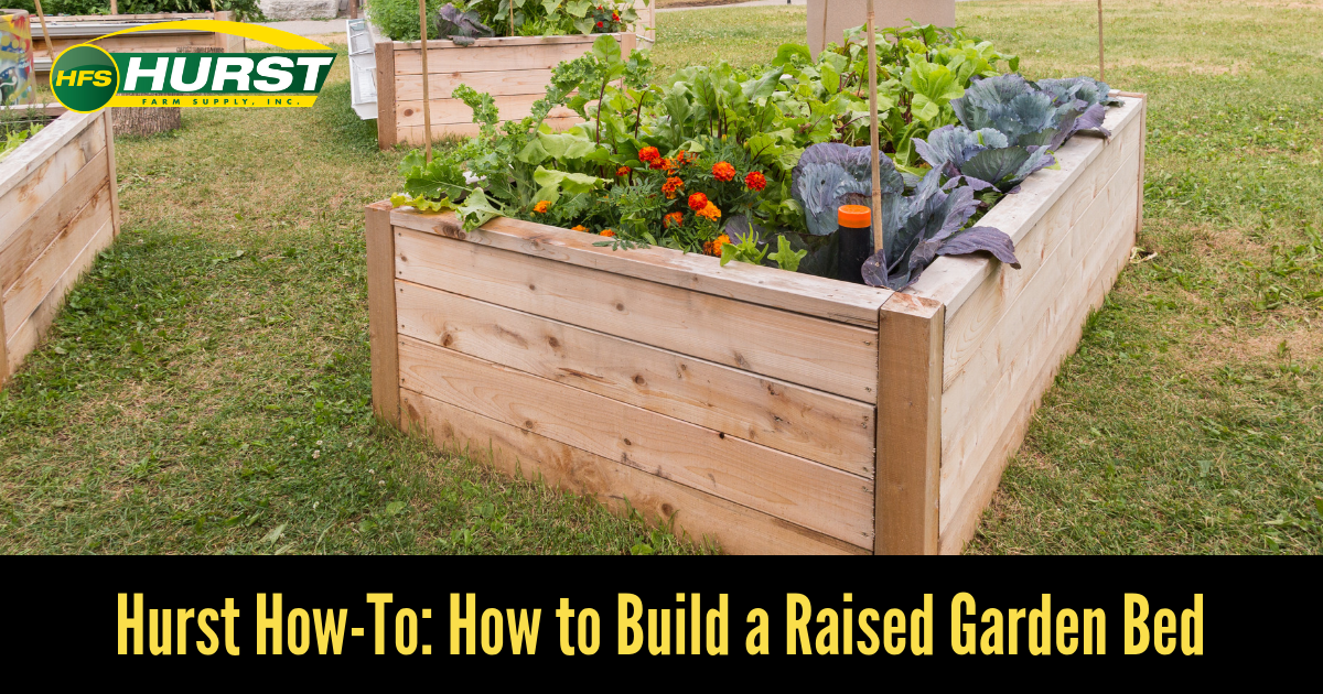 Hurst How To: How to Build a Raised Garden Bed