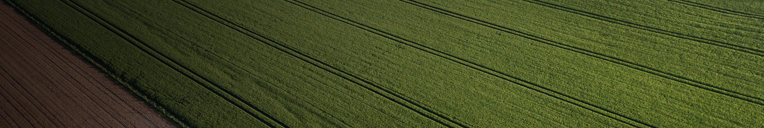Hurst Farm Supply Blog